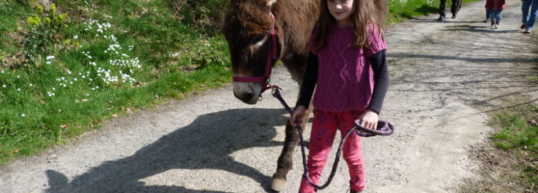 Balade à dos d'âne - Entre Pierres et Collines