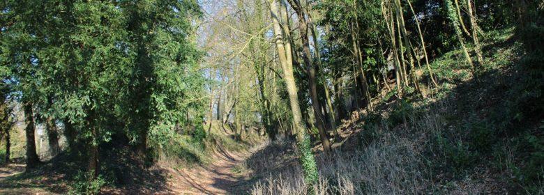 Chemins autour de la motte du Châtel à Marcillé-Raoul