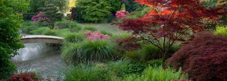 Jardins du Soleil Levant au Parc Botanique de Haute Bretagne