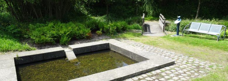 Le Jardin de l'eau - Lavoir de Radio Guillhard