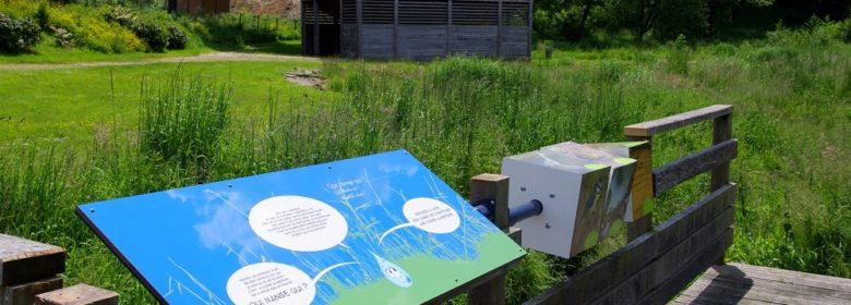 Le Jardin de l'eau - Parcours ludique