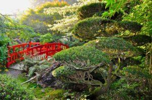 Pont rouge au jardins du Soleil Levant au Parc Botanique de Haute Bretagne