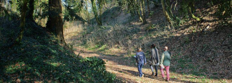 Promenade sur le site de la motte du Châtel