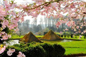 Pyramides végétales au Parc Botanique de Haute Bretagne