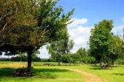 Aire de la Guipetterie - Tremblay