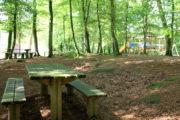 Aire de pique-nique en forêt de Villecartier